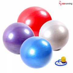 Professional Exercise Equipment Yoga Swiss Ball